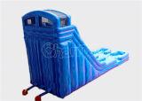 24FTの二重車線プールChsl524が付いている膨脹可能な水スライド