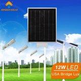 12W ha integrato tutti in un'illuminazione solare della lampada dell'indicatore luminoso di via