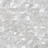 Azulejo de mosaico blanco del shell 10*20m m de la fregona del labio