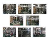 L'imballaggio Machine10 del nocciolo della noce dirige il pesatore di combinazione di Multihead