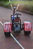 1000W 60V/12ah를 가진 Harley Citycoco 전기 세발자전거