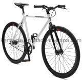 Высокий растяжимый фикчированный велосипед Sy-Fx70007 Bike шестерни