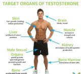 Testosterona Injectable Cypionate dos tubos de ensaio dos líquidos do petróleo da pureza elevada para o Bodybuilding