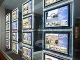 Bolsillo ligero de acrílico para los sistemas de visualización de la ventana de las propiedades inmobiliarias