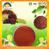 Polvere dell'estratto del seme dell'uva con buona solubilità