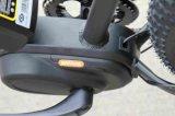 BafangセリウムEn15194が付いている中間モーター脂肪質のタイヤの電気自転車