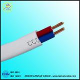 Câble plat flexible en PVC de 2 cœurs 2,5 mm