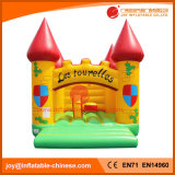 China Inflatable Bouncy Jumping Castle Bouncer pour le parc d'attractions (T2-313)