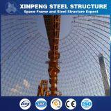 Braguero de acero profesional del diseño de Xinpeng