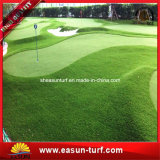 Hilados de rizado de césped artificial de Golf Putting Green