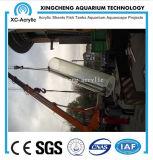 acuario material de acrílico grueso de 80m m para el proyecto del acuario