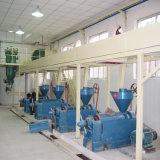Petites graines Moringa noix de coco pressée à froid de l'huile de cuisson en appuyant sur la machine de traitement d'extraction