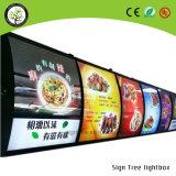 Visualizzazione acrilica fissata al muro del menu che fa pubblicità alla casella chiara del LED