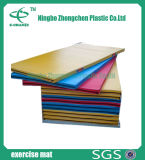 Couvre-tapis de matériel de sports de couvre-tapis d'exercice de couvre-tapis de gymnastique d'enduit de cuir de qualité supérieur