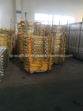 Porte d'échafaudage de porte de sécurité dans la construction de grille de sûreté d'échafaudage