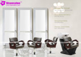 شعبيّة [هيغقوليتي] صالون أثاث لازم شامبوان حلّاق صالون كرسي تثبيت ([ب2008])