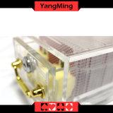 8 - Plattformen, welche die Acrylschürhaken-Karte sendet Halter mit Verschluss Ym-Sh01 verdicken