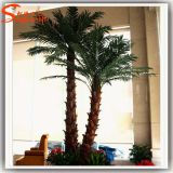 Factory Direct artificielle décoratifs Fake Washington Palm Tree