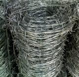 Stacheldraht/Rasiermesser-Stacheldraht (fachkundiger Hersteller)