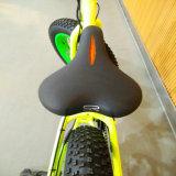 新しい脂肪質のタイヤ都市バイク中国からの20インチの電気自転車