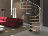 Escalier moderne d'acier inoxydable avec des opérations en bois solide