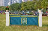 Balcón de acero galvanizado decorativo elegante 2 que cercan con barandilla de la aleación de aluminio de Haohan