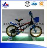 Bici dei capretti di sport dei bambini della bicicletta del ragazzo che corre gioco
