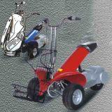 Scooter électrique (ZL-023)