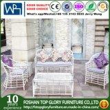 Mobilia esterna con il sofà piano del giardino della mobilia del rattan del PE (TG-005)