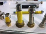 boyau flexible en acier du gaz 304stainless