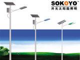 60W réverbère solaire du réservoir LED avec 8m Polonais