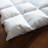 Luxury Aqueça 100% algodão tecido Shell Pato Branco Edredons