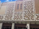 Impiallacciatura di alluminio intagliata perforata per il comitato di parete decorativo domestico