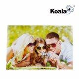 コアラOEMのブランドの優れたインクジェット高い光沢のある写真のペーパー4r/6r