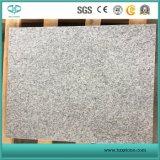 Hellgrauer weißer Granit G603 für Pflasterung-Steinwand/Fußboden-Fliese