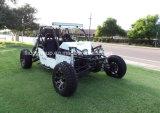 Joyer песок Viper 1100cc Efi дюны багги, 1100cc Go Kart