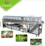 Machine van de Wasmachine van het Fruit van het Type van riem de Oranje Schoonmakende