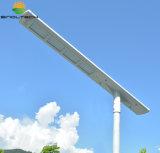 La serie 80W LED dell'elite ha integrato tutti in un'illuminazione stradale solare del LED (ELITE-080)