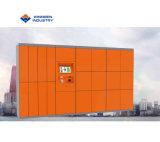 Immagazzinamento in locativo pubblico l'armadio dell'aeroporto con accesso a distanza della piattaforma