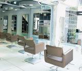 Hoogwaardige Silver Salon Styling-stoel met witte kleur