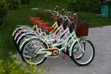 """[نو مودل] 20 """" طالب درّاجة مع نمو تصميم درّاجة"""