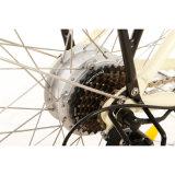 Europa-elektrisches Fahrrad 26 Zoll-Stadt-Typ Frauen mit Korb-Samsung-Batterie Jb-Tdf11z