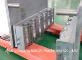 Het plastic Blazende Vormende Systeem van de Fles met AutoVoorvormen Uploader