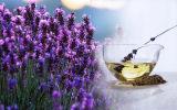 Französischer Lavendel-wesentliches Öl für Gesundheit u. Schönheit