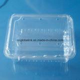 Casella libera a gettare di imballaggio di plastica della casella di plastica di imballaggio per alimenti per pepe