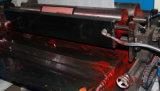 High Speed machine 6 Couleur Al Foil Flexo Printing