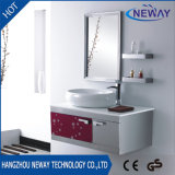 簡単なステンレス鋼の壁の防水浴室用キャビネット