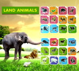 Pocket Zoo Smart Reading Flash Education Ar Toy Card