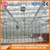 Estufa comercial do vidro Tempered da cavidade da construção de aço da agricultura