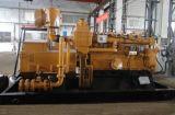 Exportation d'engine du groupe électrogène de gaz de biomasse de la puissance moyenne 300kw de haute performance 6190 vers la Russie